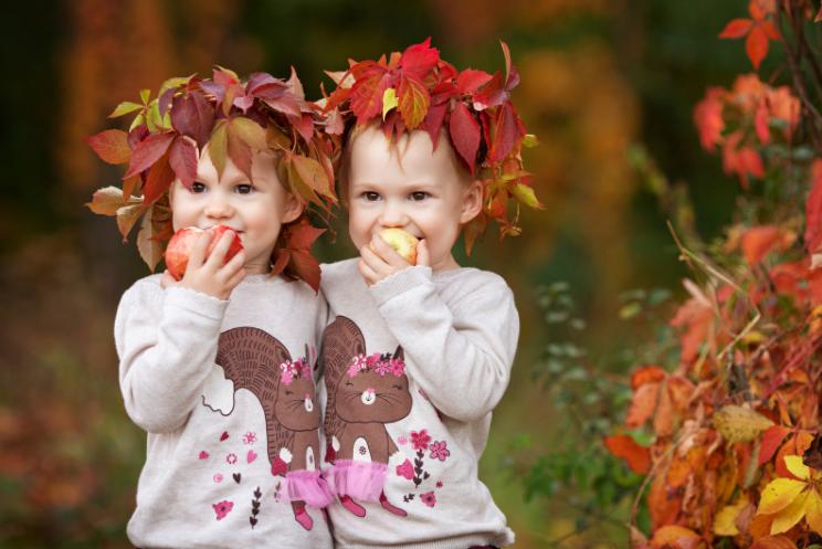 eeneiige of twee eiige tweelingen zijn er in zes types