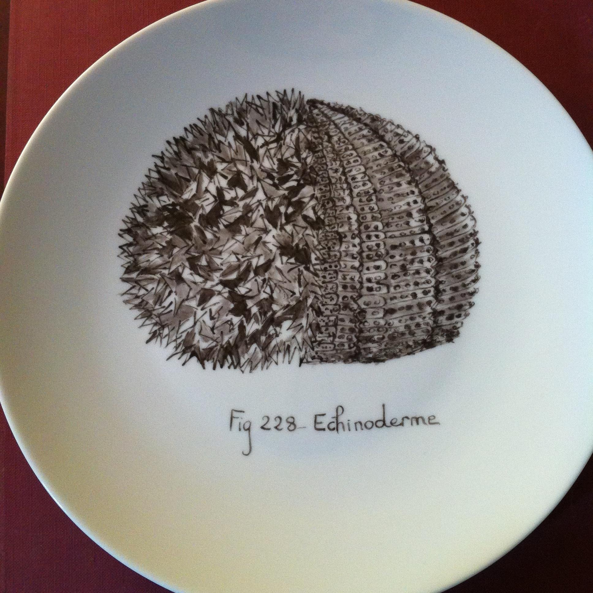 Grande assiette D 26 cm