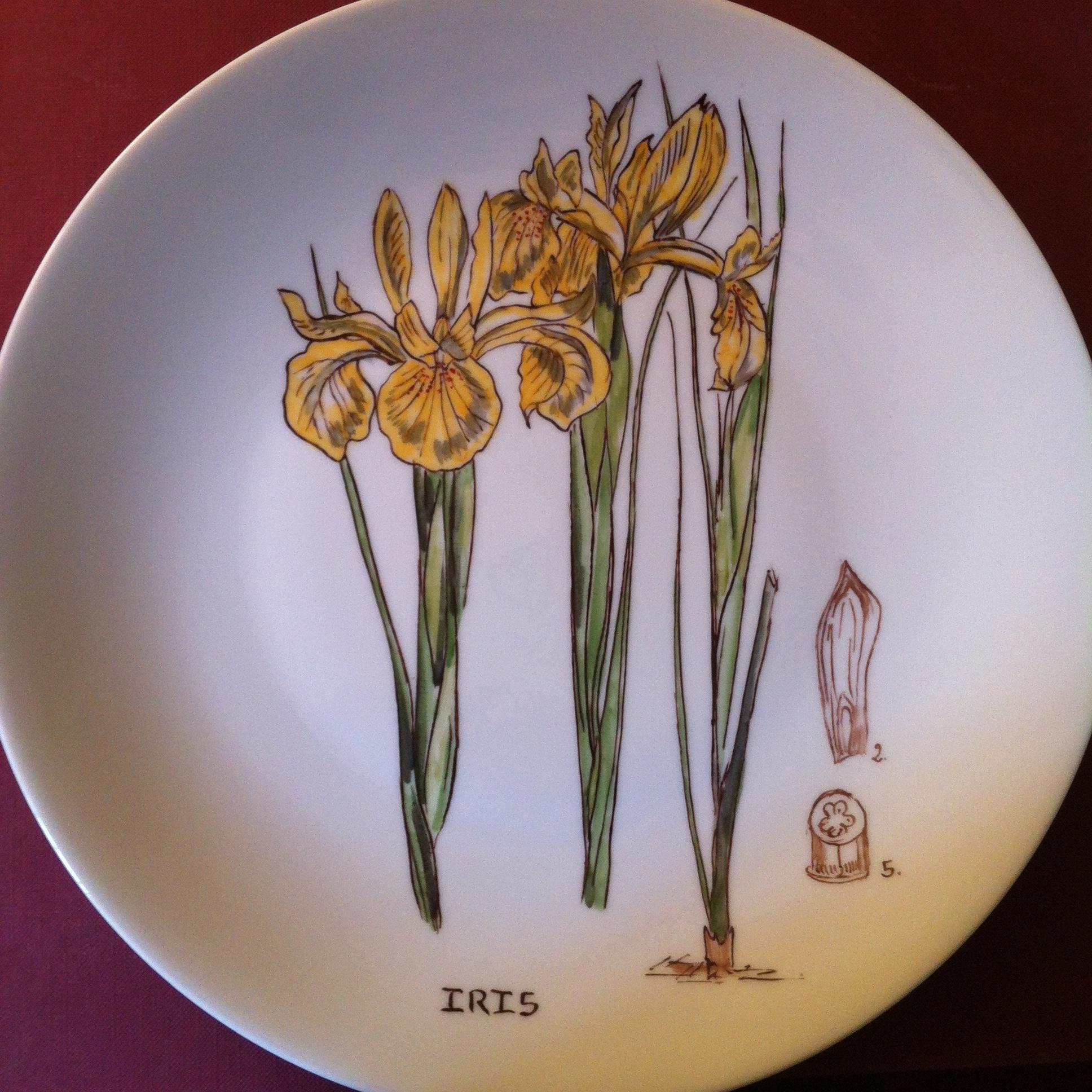 D 26 cm JARDINS ROYAUX DE KEW