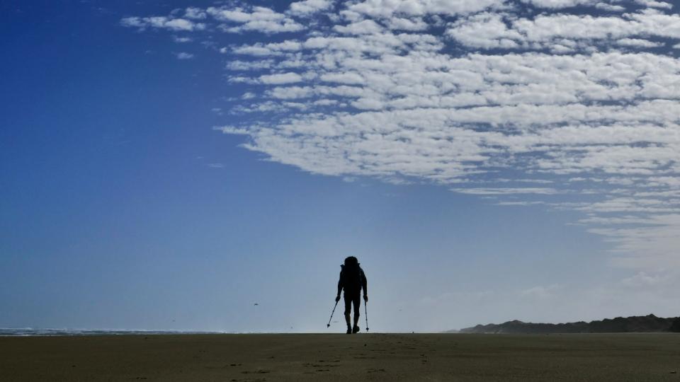 Ninty Mile Beach Te Araroa