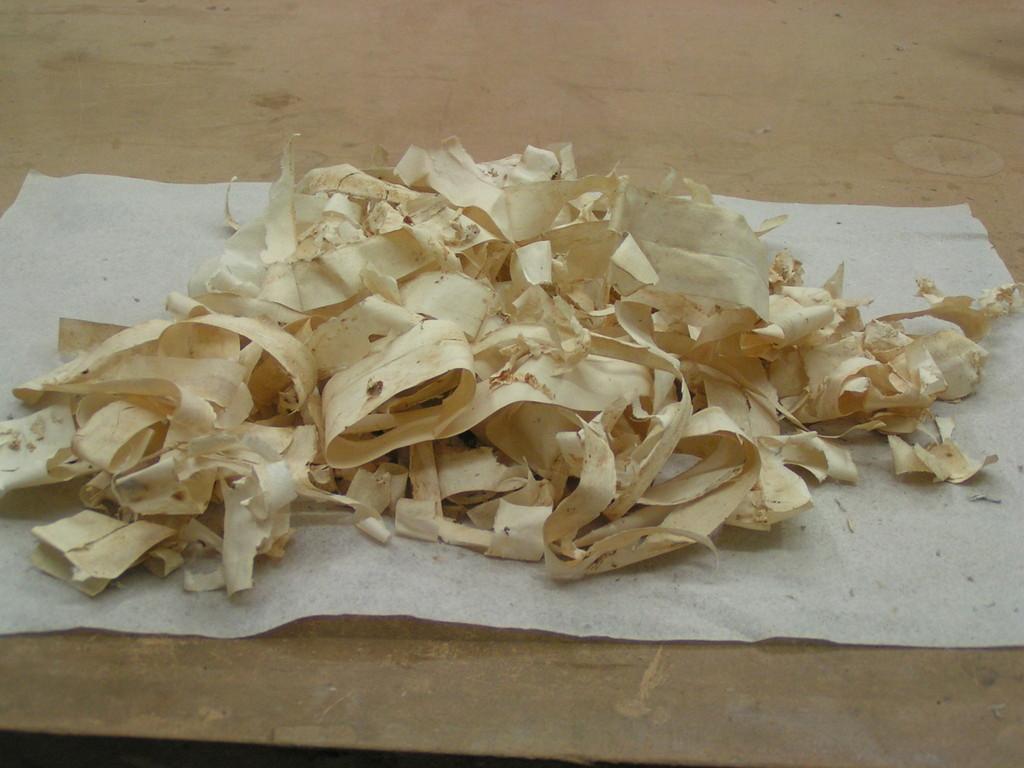braghette in carta rimosse