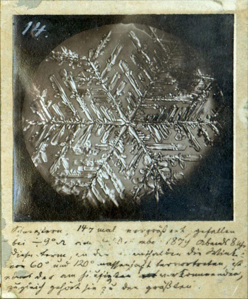 Schneekristall Photographie