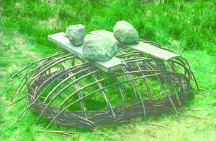 枠組みの上に重石を置く。最低1週間待った後に、地面から枠組み持ち上げる。