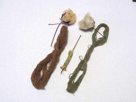 茶色と緑色のコットンボール(上)、スピンドルとより糸(中央)、煮た後(横)Photo by Cindy Conner