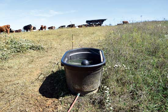 春には水が豊富。つまり、この重要な資源を無駄にする心配をせずに漏れの修繕できる。 Photo by Shutteye Photography
