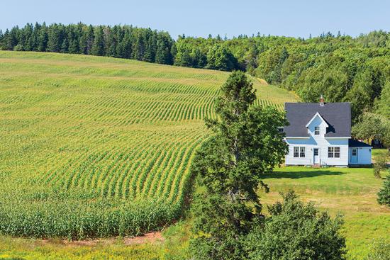 化学農薬や殺虫剤を使用する農地に近い家屋で農薬汚染が問題に