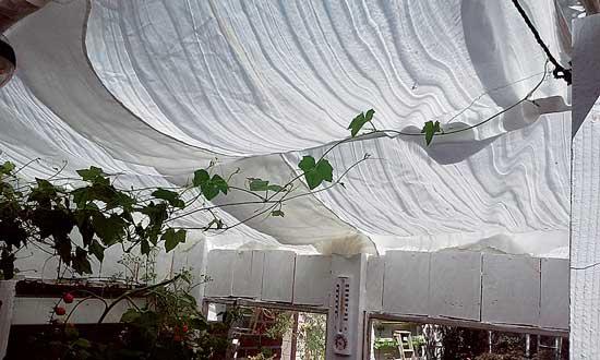 カーテンクロスが日陰をつくり、日中の暑い時間帯に室内温度の安定化に役立つ。Photo by Autumn Hansen