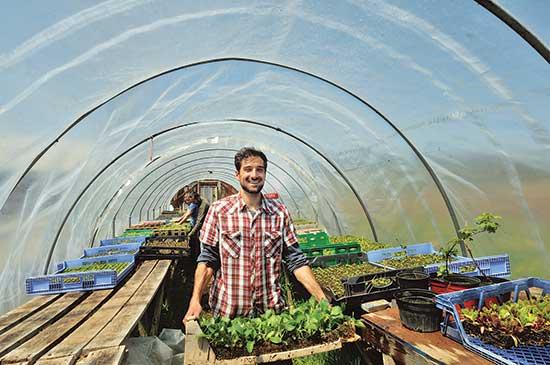 インターンのダスティン・アティクは、ドバンスキー家が椎茸などの有機農産物を育てるのを手伝っている。