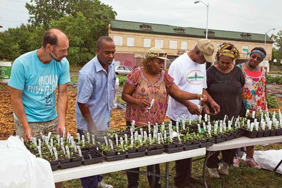 デトロイトの都市農家、都市農業の中心地、苗分け会に参加。