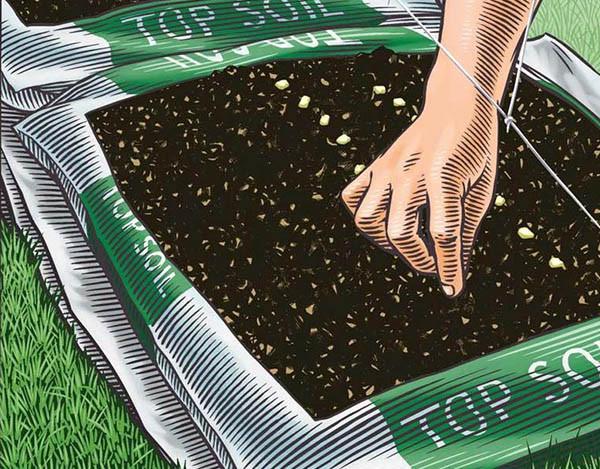 超簡単! 用土を買い、穴をあけ、種や苗を直植えするだけ。これで野菜やハーブが20種類超。 ILLUSTRATION: KEITH WARD/JOHN GRUEN