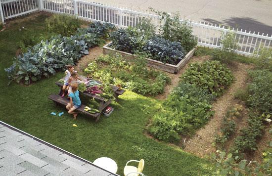 セイラー家は芝生を(車寄せも!)有機菜園に変えた。