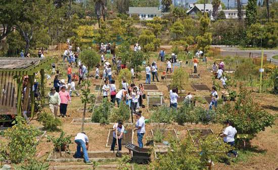 市全域の地域イベントにて、生徒、親、教師がロサンゼルスの24th Street Elementary School の菜園で作業。