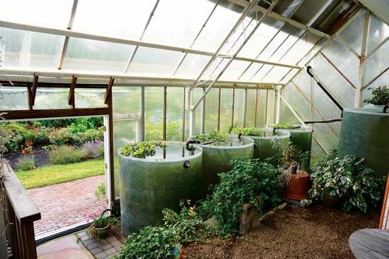 グラスファイバーの樽で年中気候が制御される。効果的かつ魅力的。Photo by The Green Center Greenhouse/Courtesy of Lindsey Schiller
