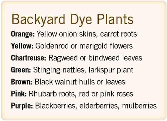 裏庭の染料植物 リストは、あなたが創り出したい色毎に、簡単に見つかる染色植物を示す。リストは Susan Verberg が提供。 橙色:黄タマネギの皮、人参の根。黄色:アキノキリンソウやマリーゴールドの花。黄緑色:ブタクサやサンシキヒルガオ属の葉。緑色:イラクサ、ヒエンソウ。茶色:クログルミの殻や葉。桃色:ルバーブ(ダイオウ)の根、赤やピンクのバラ。紫色:ブラックベリー、エルダーベリー、マルベリー。