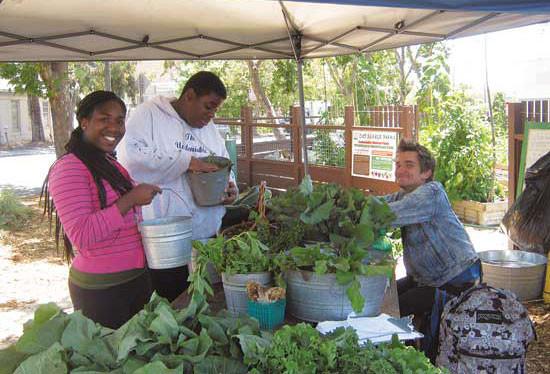 カリフォルニア州オークランドのCity Slicker Farm直売所のボランティアが親睦を深めている。