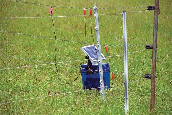 太陽光発電の電気柵本機と耐候性容器で、遠隔地の日の当たる牧草地に柔軟に対応。