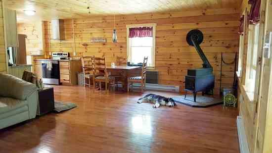 ディーナ・カリガンと彼女の夫は、ウエストバージニア州の森に1年がかりで小さな家を建てた。今二人は、その家でローンに縛られることなく生活し、庭を持ち、果樹を植え、ヤギ、鶏を飼っている。Photo by Dina Carrigan.