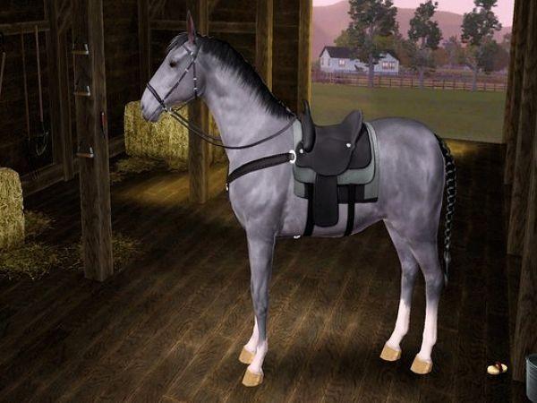 Sims 3 - Ecrin