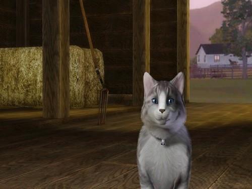 Sims 3 - Tyfauve