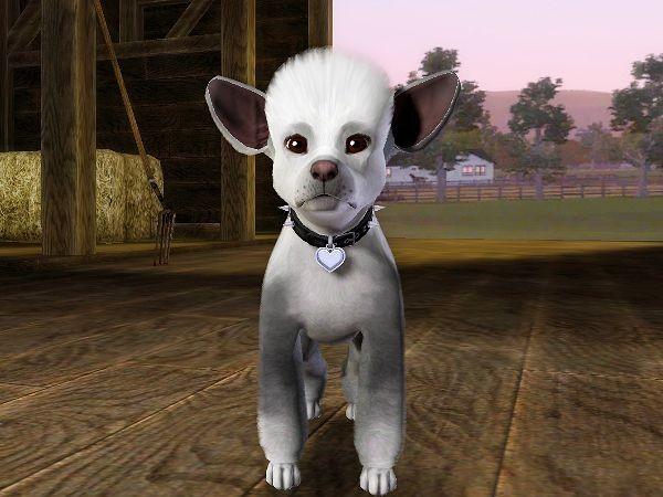 Sims 3 - Monstror le Terrible