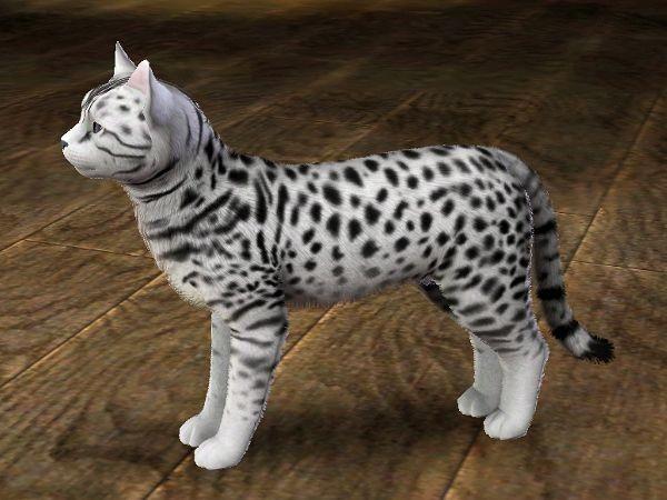 Sims 3 - Neige
