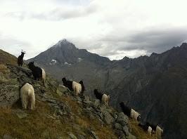 Die Berge im Hintergrund- herrlich-aber wohl auch gefährlich...
