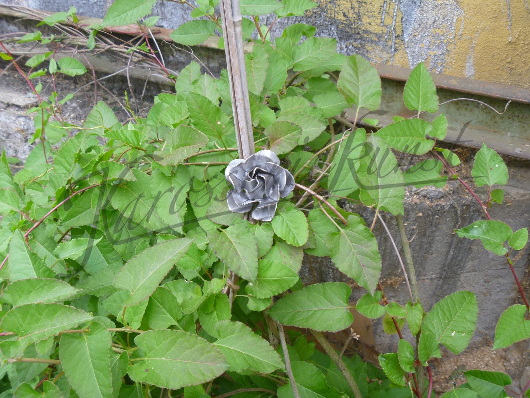 eine Blume aus Blech