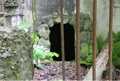 Löwen im Tübinger Wald