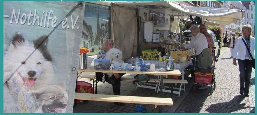 Alfeld Stadtfest Spitz Nothilfe Stand