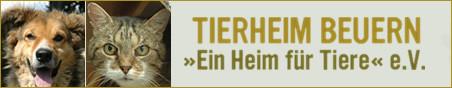 tierheim-beuern