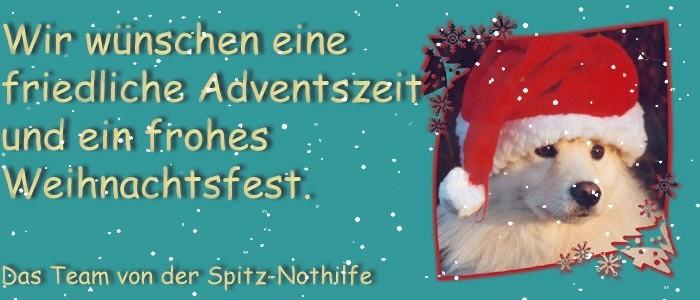Frohe Weihnachten Spitz Nothilfe
