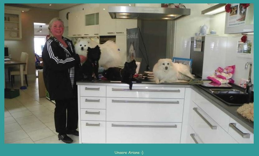 Küchenstudio Noack Alfeld Spitz Nothilfe Stand
