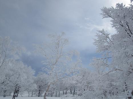 120326-013 スキージャム勝山
