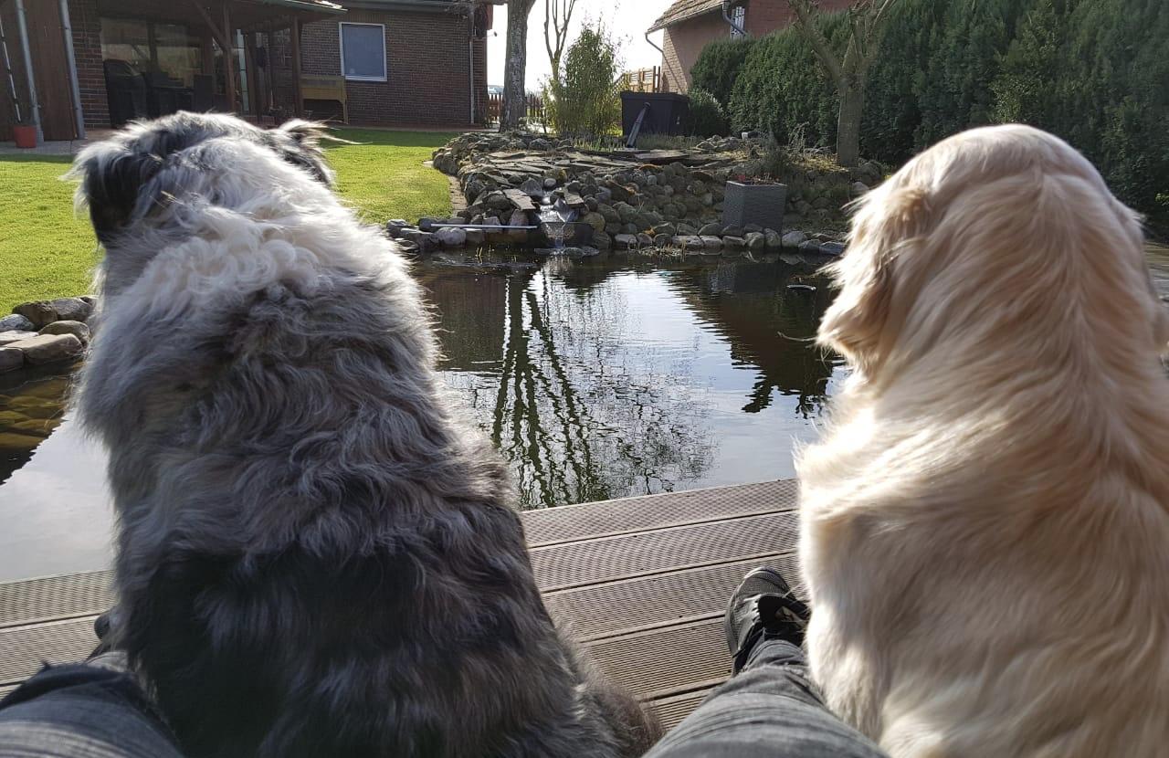 Marley und Xani und ihr Haus am See...