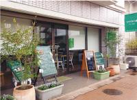 ひのきの森 by BMD  広島