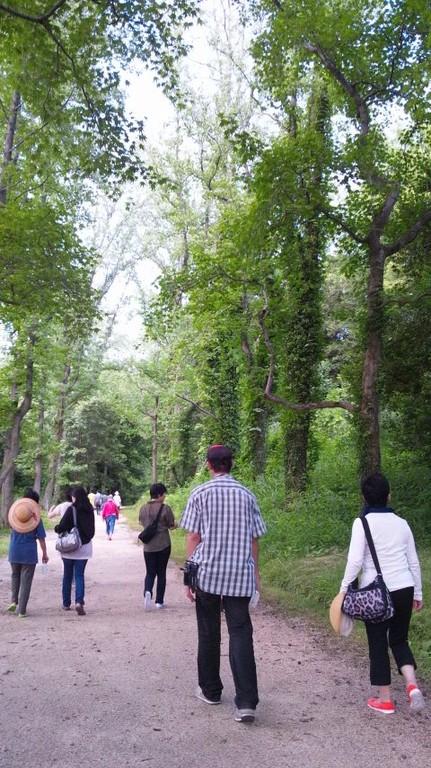 岡山市森林公園でお散歩タイム
