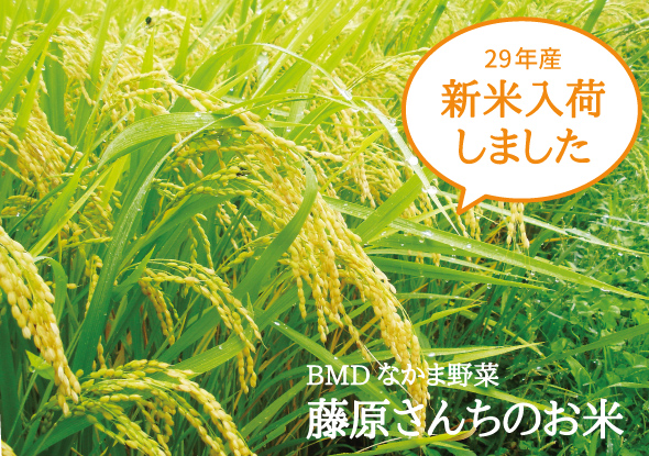BMDなかま野菜 岩手産 藤原さんちのお米 H28年産新米入荷