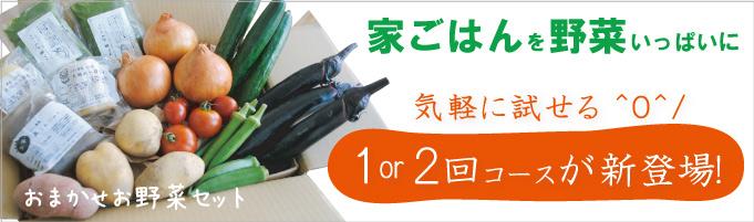 岡山県ミモレ農園 農薬不使用 おまかせ野菜セット