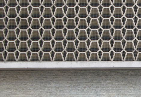 Netz zur Taubenabwehr auf einer Wand mit hoher Anflugfrequenz