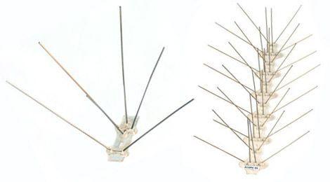 Beispiel für Edelstahlspikes auf Polycarbonatleiste