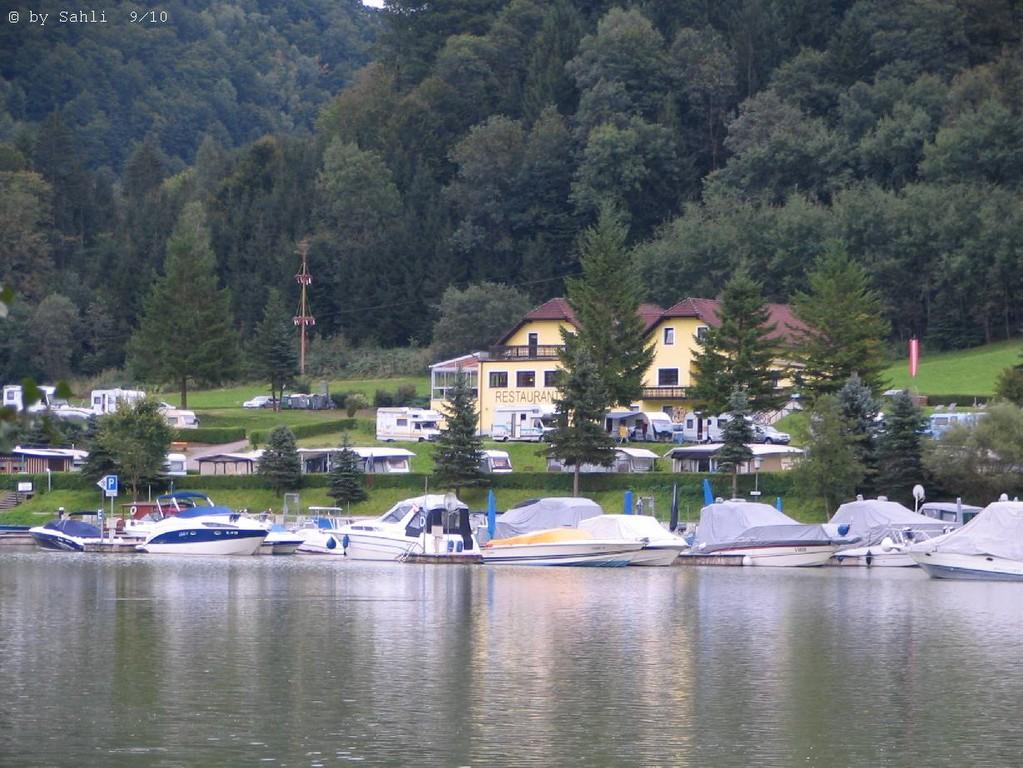 Schlögener Schlinge (Donau)