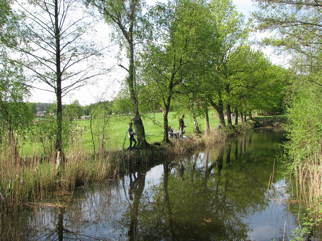 Ruhe am Teich!!! Nach anfänglicher Aufregung steigt die Spannung:  Wer fängt den ersten Fisch?