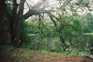 Warmia i Mazury, jezioro Dadaj