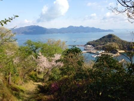猪子島も見えます