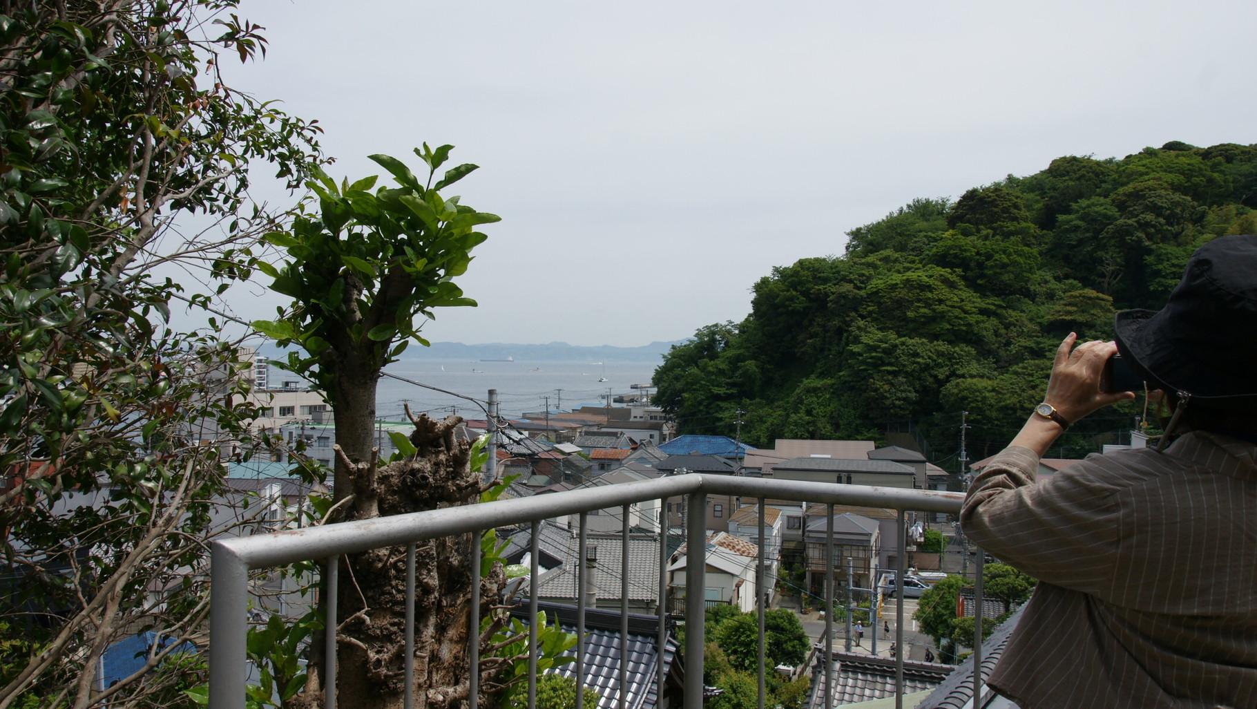 西 叶 神社の高台から東京湾と房総半島を望む、