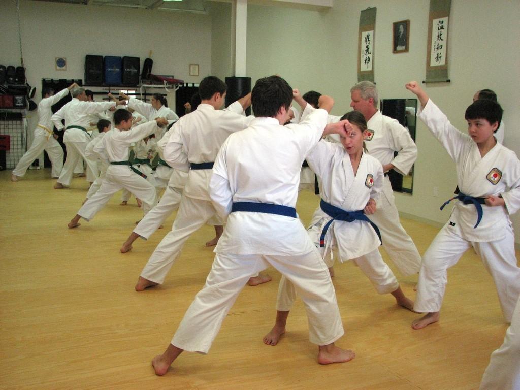 1 step kumite