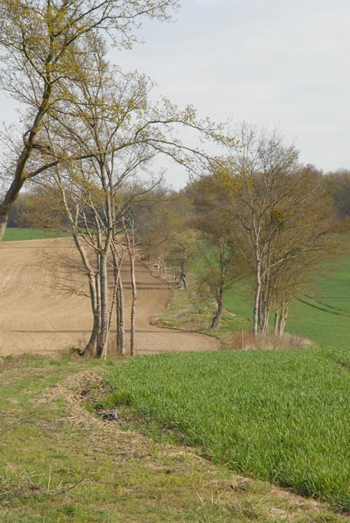 Chemins du Bouchat - Montfaucon