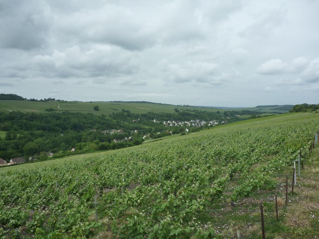Vallée du Dolloir