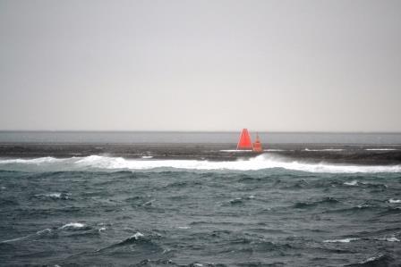 80. Breitengrad Nord bei Windstärke 10 - nichts für Warmduscher. Die Walrosse sind kaum zu erkennen.