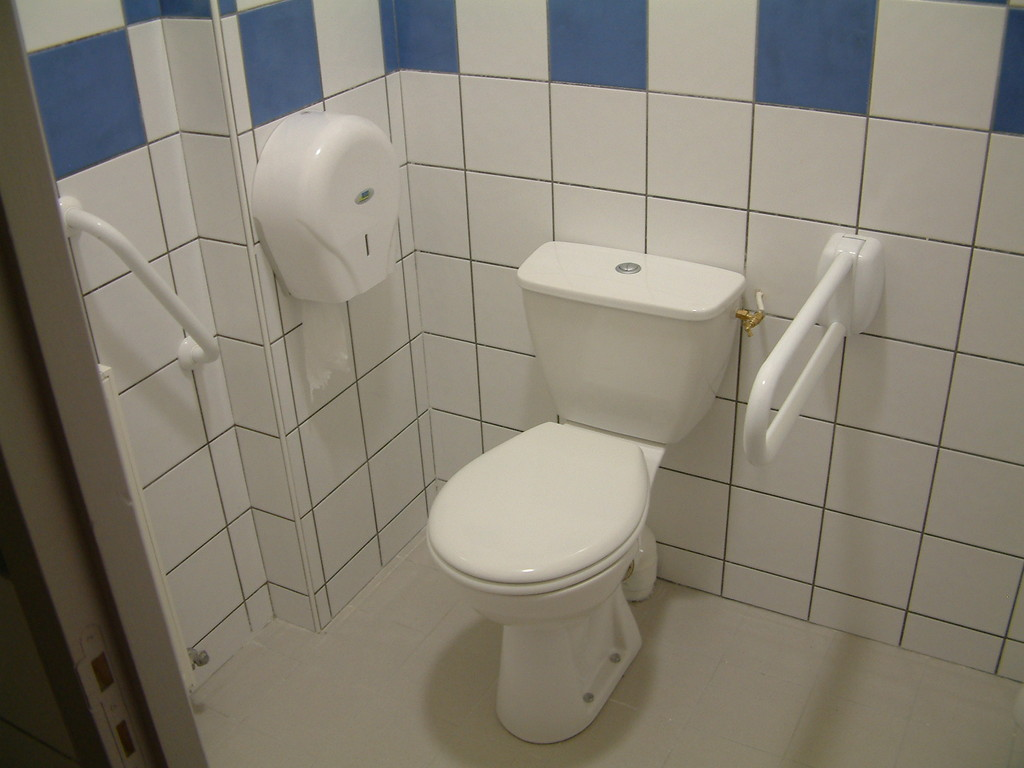 sanitaire handicapé